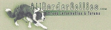 All About Border Collies logo